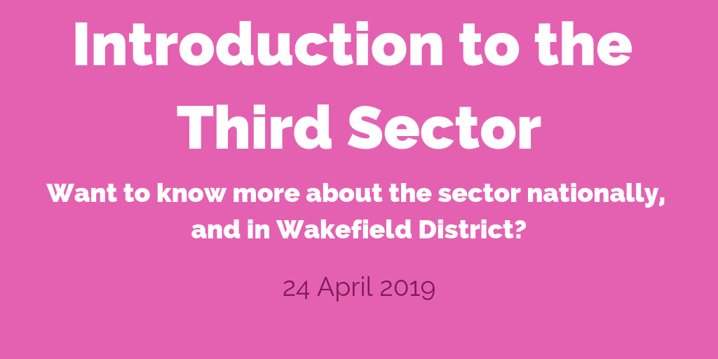 Introduction to the Third Sector